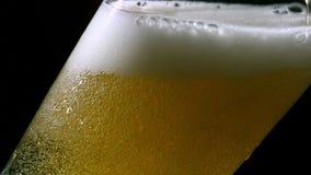 Пиво лить в стекло на черной предпосылке видеоматериал