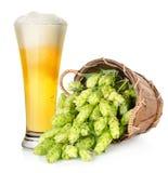 Пиво и хмель в корзине стоковые изображения