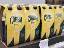 Пиво КОБРЫ стоковые изображения
