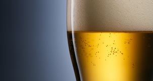Пиво лагера вопросов алкоголизма и наркомании лить в стекло Стоковая Фотография RF