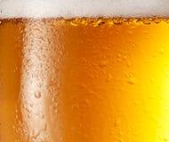 пиво падает стекло стоковое изображение rf