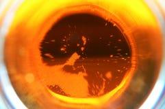 пиво приходит внутрь Стоковая Фотография RF