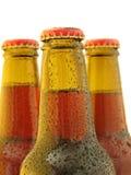 пиво свежее Стоковое Изображение