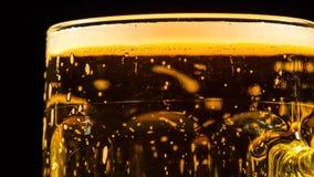 пиво свежее сток-видео