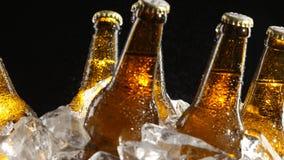 Пиво стоит в льде, подачах воды сверху, брызгает падение на стекле Черная предпосылка конец вверх сток-видео
