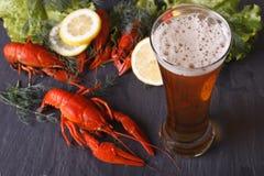 Пиво с концом-вверх раков на таблице горизонтальное взгляд сверху Стоковое Фото