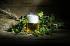 Пиво, хмели и уши стоковое изображение rf