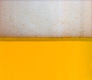 пиво 5 новое Стоковые Фото