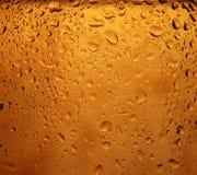 пиво стоковые изображения rf