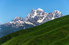 2 пика держателя Ushba Главный кавказский гребень Стоковое Изображение