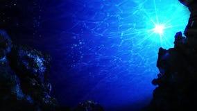 Пикирование в океане Подводные лучи и воздушные пузыри солнца взгляда в темносинем море r E видеоматериал