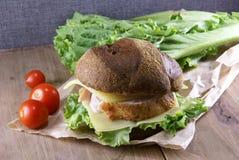 Пикник, бургер с мясом, сыр и свежие овощи Стоковое Изображение RF