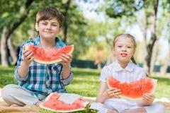 Пикник в парке Стоковое Фото