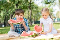 Пикник в парке Стоковые Фото
