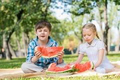 Пикник в парке Стоковые Изображения