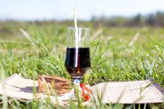 Пикник в свежем воздухе стоковое фото rf