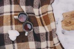 Пикник зимы на снеге Горячее сердце чая, thermos и снежного кома на уютном греет одеяло Стоковое Изображение