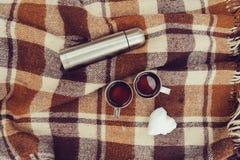 Пикник зимы на снеге Горячее сердце чая, thermos и снежного кома на уютном греет одеяло Стоковое Изображение RF