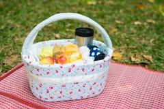 пикник корзины на луге Стоковые Изображения