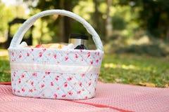 пикник корзины на луге Стоковые Фото