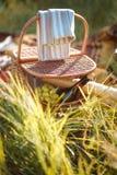 Пикник корзины плодоовощ Стоковые Фото