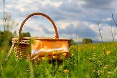 пикник корзины Стоковая Фотография