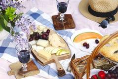 Пикник лета с сыром, вином, плодоовощами и хлебом Стоковая Фотография
