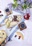 Пикник лета с сыром, вином, плодоовощами и хлебом Стоковые Фото
