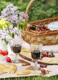 Пикник лета с сыром, плоским хлебом, вином, плодоовощами и хлебом Стоковое Фото