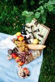 Пикник на парке, очень вкусная еда Стоковое фото RF