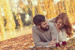 Пикник на упаденные листья Стоковое Изображение RF