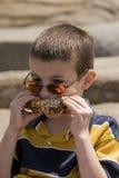 пикник обеда Стоковое Изображение RF