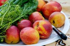 Пикник овощей плодоовощ Стоковое Изображение RF