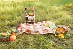 Пикник Овощи корзины glade Осень Стоковое Изображение RF