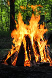 Пикник огня лагеря стоковые фото