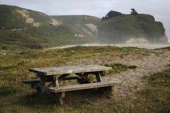 пикник пляжа Стоковые Изображения