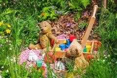 Пикник плюшевого медвежонка Стоковые Фото