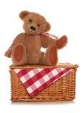 Пикник плюшевых медвежоат Стоковое Изображение RF