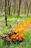 пикник решетки пожара Стоковые Фото