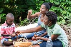пикник семьи счастливый стоковая фотография