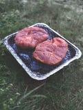 Пикник с барбекю outdoors Стоковые Изображения RF