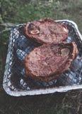 Пикник с барбекю outdoors Стоковые Фотографии RF
