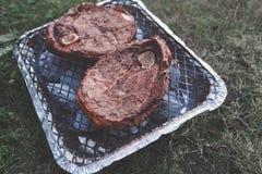 Пикник с барбекю outdoors Стоковая Фотография