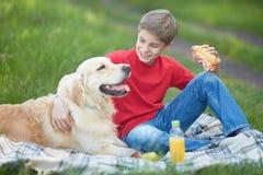 Пикник с собакой стоковые изображения