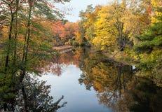 Пиковый листопад Стоковые Изображения RF