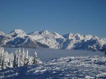 пиковый снежок Стоковые Изображения RF
