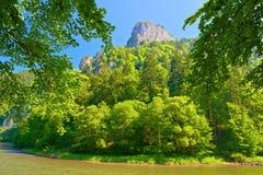 Пик горы Sokolica в Pieniny. Стоковая Фотография