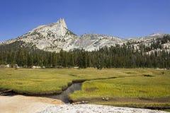 Пик собора в Yosemite Стоковая Фотография RF