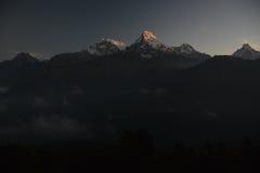 Пик Annapurna в восходе солнца Гималаи Непал Взгляд от холма Poon Стоковая Фотография