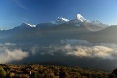 Пик Annapurna в восходе солнца Гималаи Непал Взгляд от холма Poon Стоковое фото RF